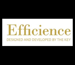 Efficience